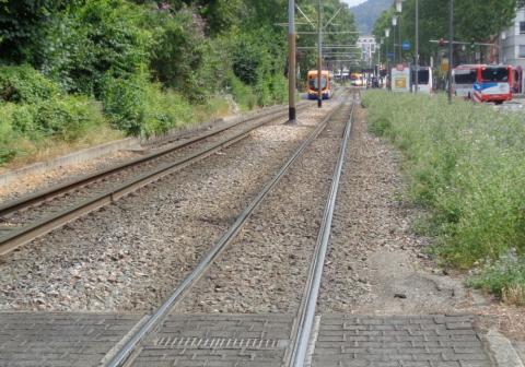 Mobilitätsnetz Heidelberg, Hauptbahnhof Nord, Straßenbahntrasse Kurfürstenanlage